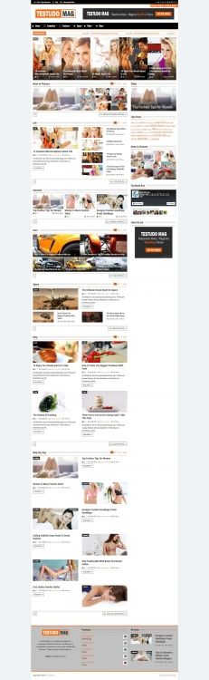 Testudo Mag - Magazine WordPress Theme