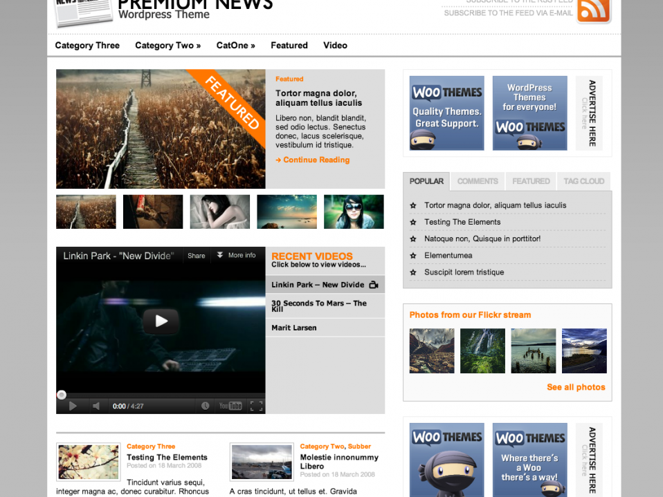 Premium News - free wordpress theme - Themes4WP