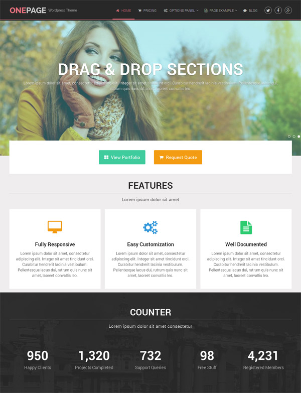 OnePage - Portfolio and Business WordPress Theme