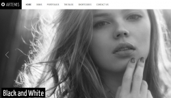 Artemis Photography Gallery Portfolio Theme - Photography