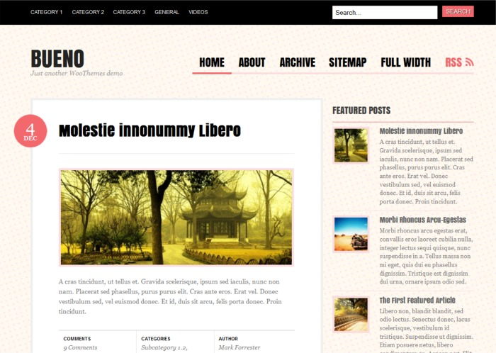 Bueno free wordpress theme - Blog|Free wordpress themes