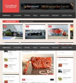 CrossRoad - Responsive WordPress Magazine / Blog - Magazine