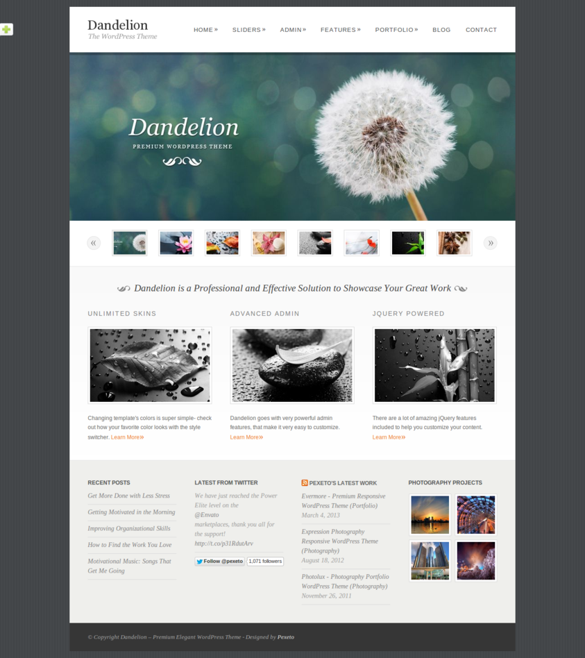 Dandelion - Powerful Elegant WordPress Theme - Portfolio