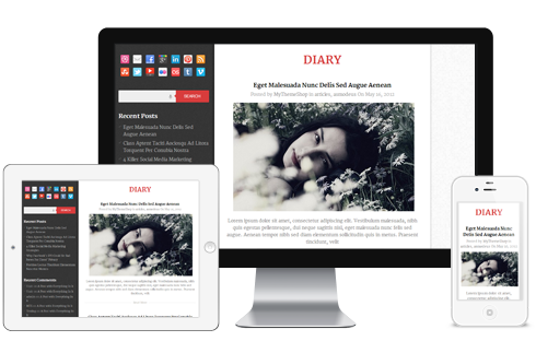 Diary Free WordPress Theme - Blog|Free wordpress themes