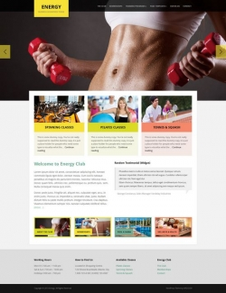 Energy WordPress Theme - Fitness|Premium wordpress themes