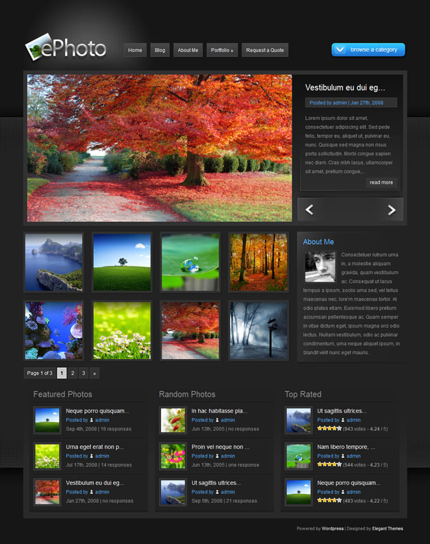 ePhoto WordPress Theme - Photography