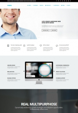 Mana - Responsive Multi-Purpose Theme - Business