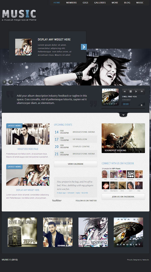 Music: Musicians theme & Facebook app - Music|Premium wordpress themes