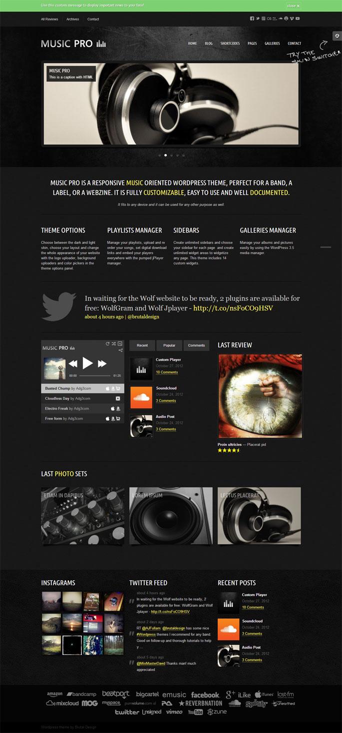 Music Pro - Music Oriented WordPress Theme - Music Premium wordpress themes