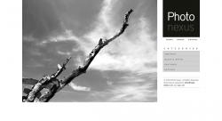 Photo Nexus Wordpress gallery 2 in 1 - Photography