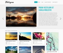 Photogram free wordpress theme from Colorlabs - Free wordpress themes|Photography