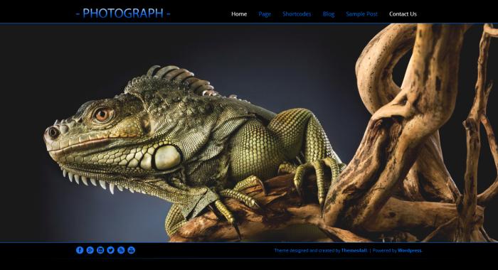 Photograph Wordpress Theme - Photography