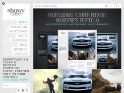 ShowyCase - Portfolio / Photography WP Theme - Creative|Photography