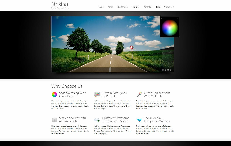 Striking Premium Corporate & Portfolio WP Theme - Business|Ecommerce>WooCommerce