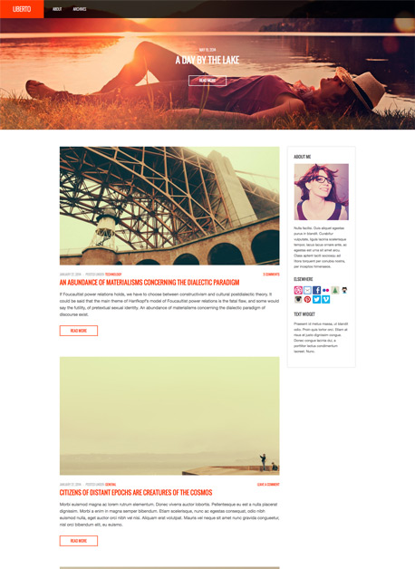 - Blog|Premium wordpress themes
