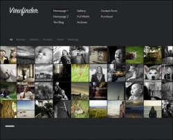 Viewfinder: Photography WordPress Theme - Gallery|Photography