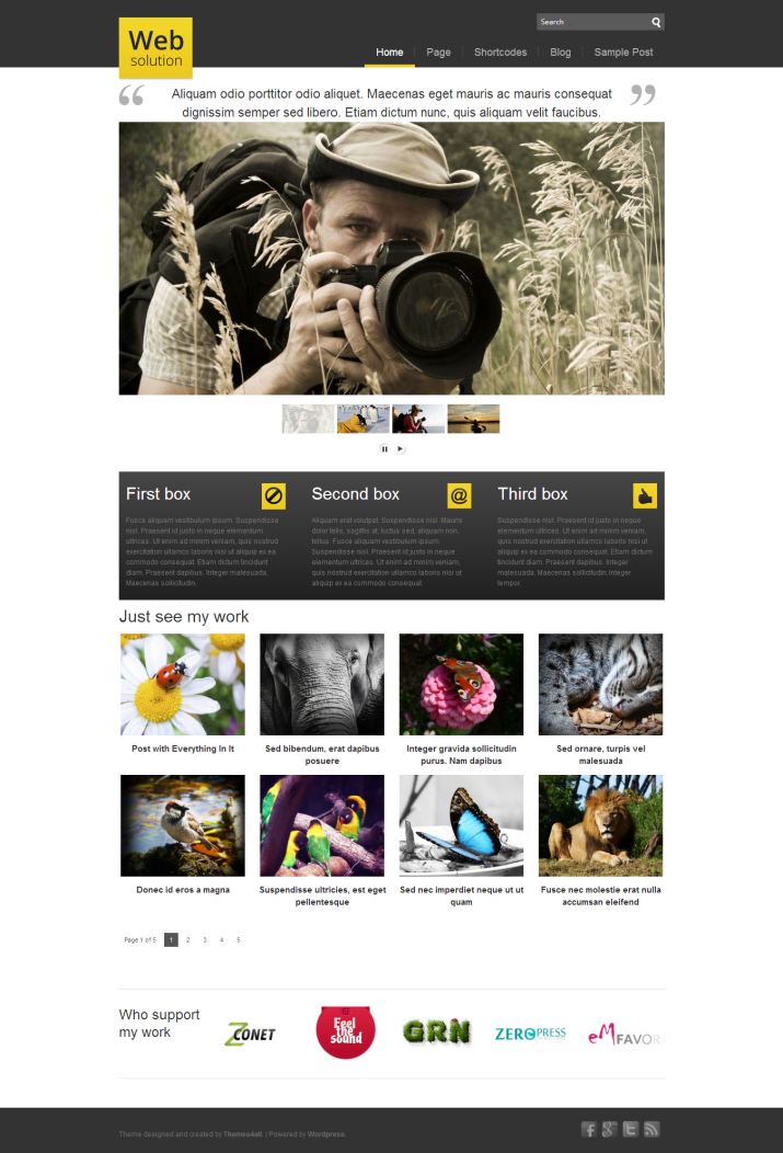 Web Solution - premium wordpress theme - Premium wordpress themes