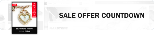 MaxStore PRO sale offer